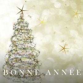 Carte postale originale et chic pour voeux de Noël et Bonne année - GARANCE CASSIEN - Photo ©GARANCE CASSIEN