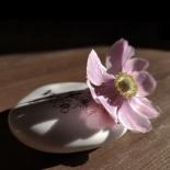 Galet soliflore en porcelaine à poser de Myriam Aït Amar - Photo © GARANCE CASSIEN